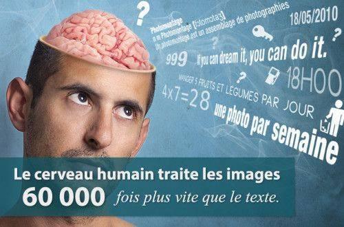 cerveau-images